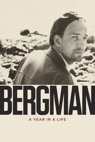Poster Bergman: A Year in a Life