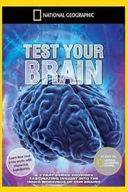 Test Your Brain 2011