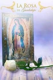 La Rosa De Guadalupe (USA)