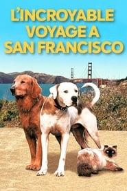 L'incroyable voyage II : À San Francisco