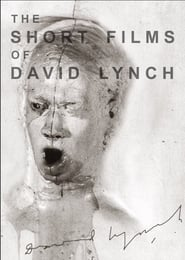 The Short Films of David Lynch