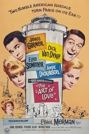 The Art of Love (1965)