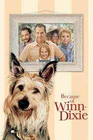 Because of Winn-Dixie (2005), film online subtitrat