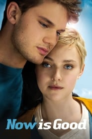 Now Is Good en streaming
