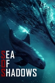 Poster for Sea of Shadows