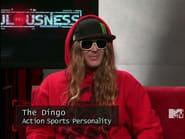 The Dingo II