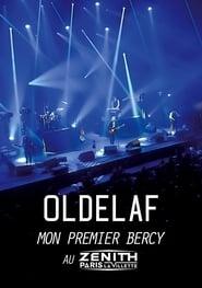 Oldelaf au Zénith 2014