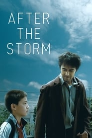 Poster for After the Storm