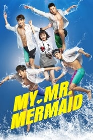My Mr. Mermaid