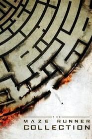 Maze Runner: Prova de Fogo Dublado Online
