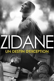 Zidane, un destin d'exception 2007