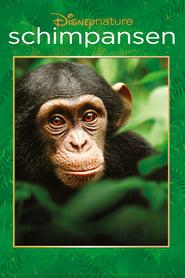 Schimpansen [2012]