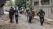The Walking Dead Season 10 Episode 14 : Look At Flowers