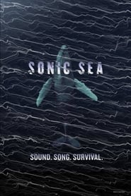 Sonic Sea free movie