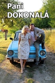 Pani Dokonalá (2018) Zalukaj Online