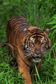 World's Deadliest Animals