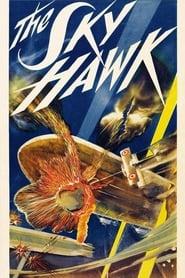 The Sky Hawk 1929