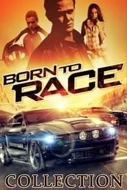 Born to Race Collection