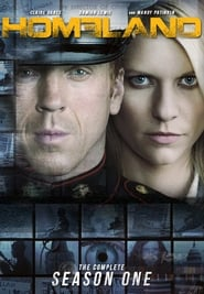 Homeland: Staffel 1