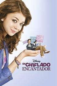 Ver Un chiflado encantador Online HD Castellano, Latino y V.O.S.E (2011)
