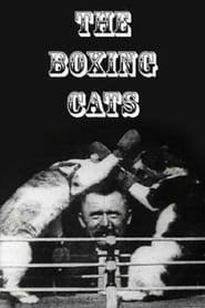 The Boxing Cats (Prof. Welton's)