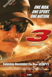 3: The Dale Earnhardt Story 2004