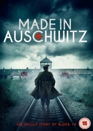 Made in Auschwitz: The Untold Story of Block 10 (2019)
