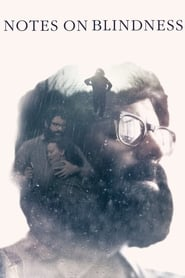 Imagen Notes on Blindness