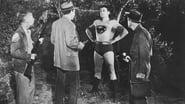 Adventures of Superman en streaming