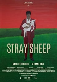 Stray Sheep (2018)