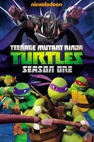 Teenage Mutant Ninja Turtles - Season 1 (2012) poster