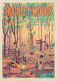 Hockley Woods (2020)