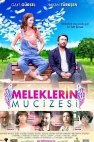 Meleklerin Mucizesi – Miracolul Ingerilor (2014)