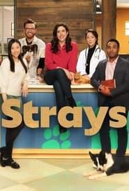 Strays Season 1 Episode 3