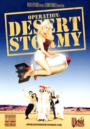 Operation: Desert Stormy (2007)