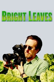 Poster for Bright Leaves