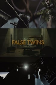 Watch False Twins 2014 Free Online