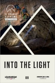 Poster Into The Light 2014