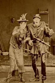 The Detectress 1919
