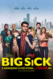 The Big Sick: Il matrimonio si può evitare, l'amore no HD [2017]