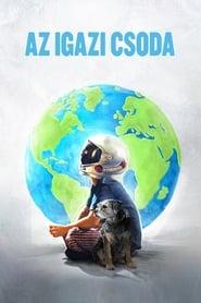 Az igazi csoda-magyarul beszélő, amerikai családi film, 113 perc, 2017