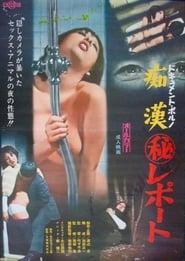 ドキュメントポルノ 痴漢(秘)レポート 1973