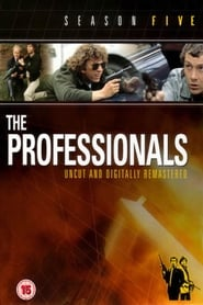 The Professionals streaming vf poster