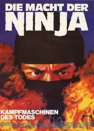 Die Macht der Ninja 1984