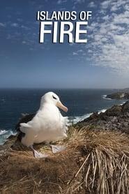 Islands of Fire 2019