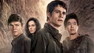 Maze Runner: The Scorch Trials Images