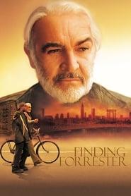 Szukając siebie (2000) Cały Film Online CDA Online cda