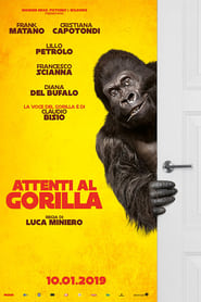 Image Attenti al gorilla [STREAMING ITA HD]