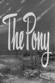 The Pony 1955