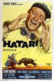 Hatari! 1962